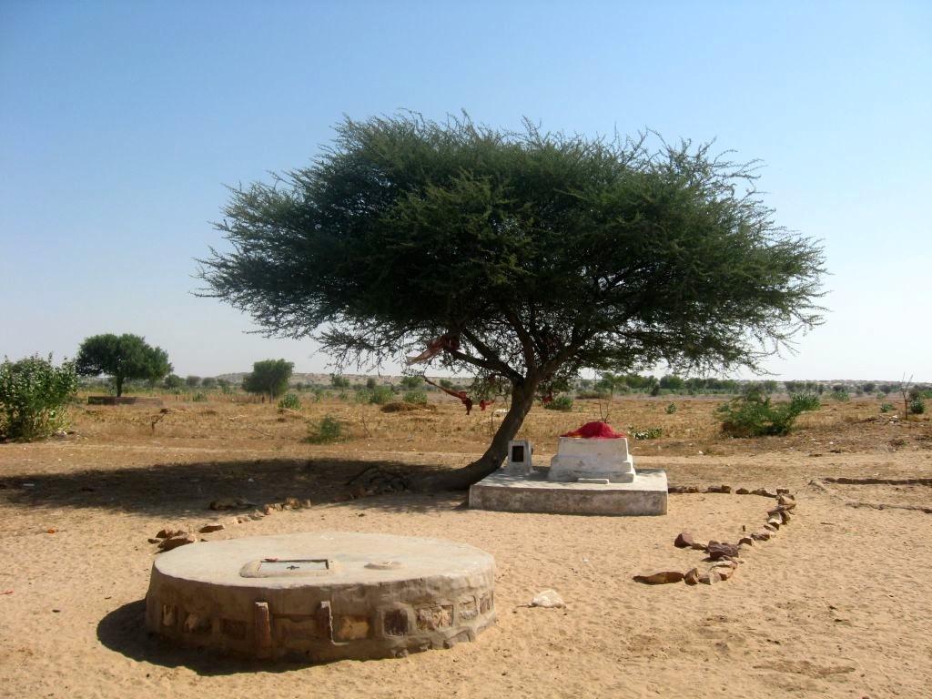 Thar desert 1 02
