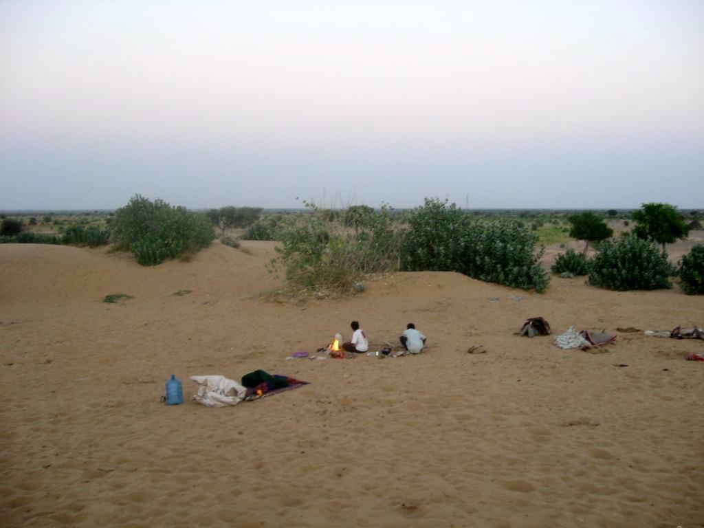 Thar desert 1 14