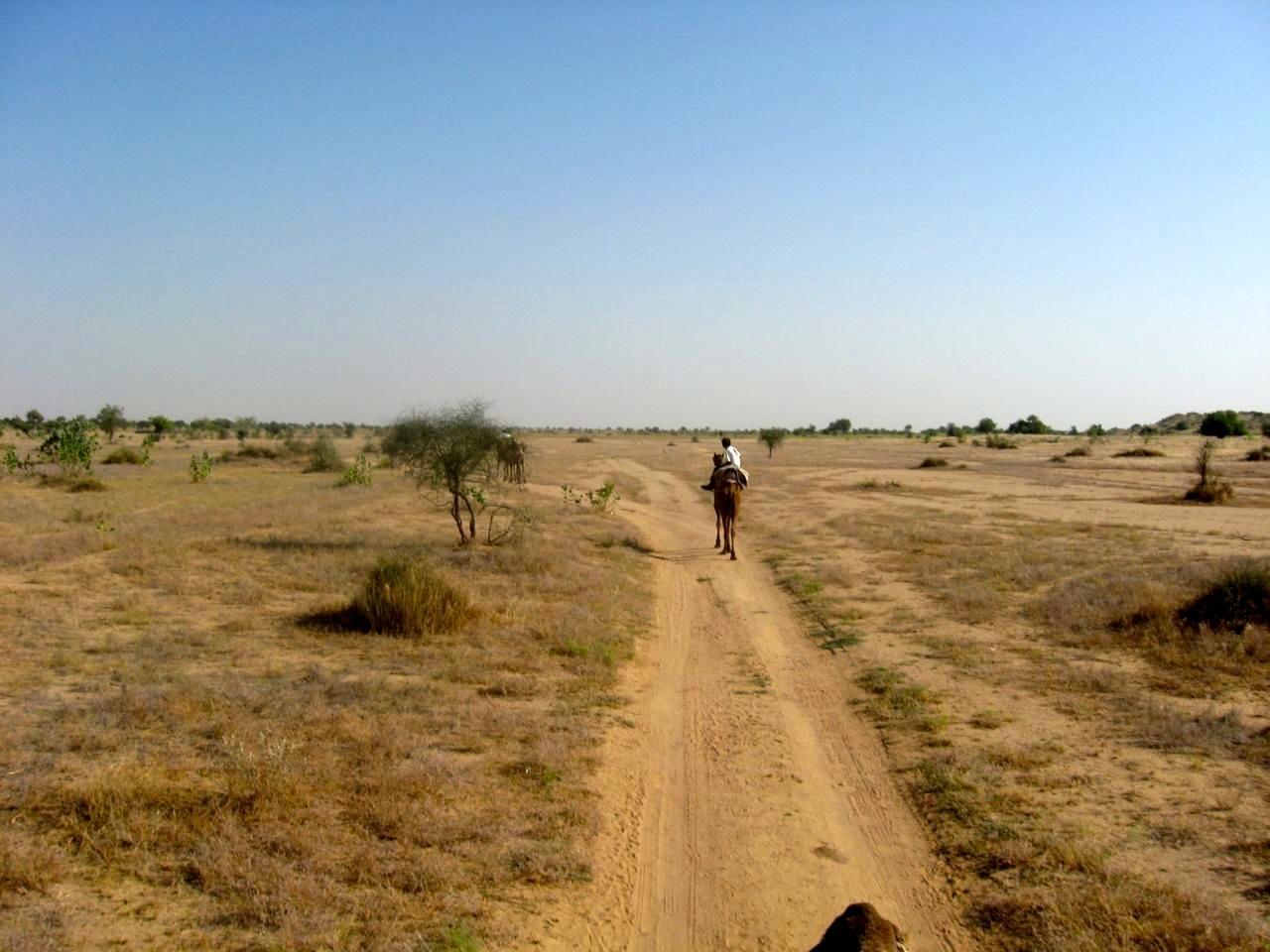 Thar desert 1 19