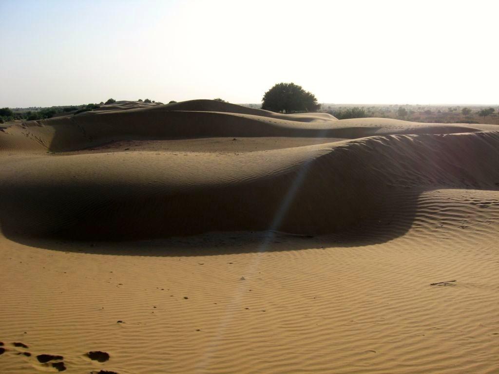 Thar desert 1 23