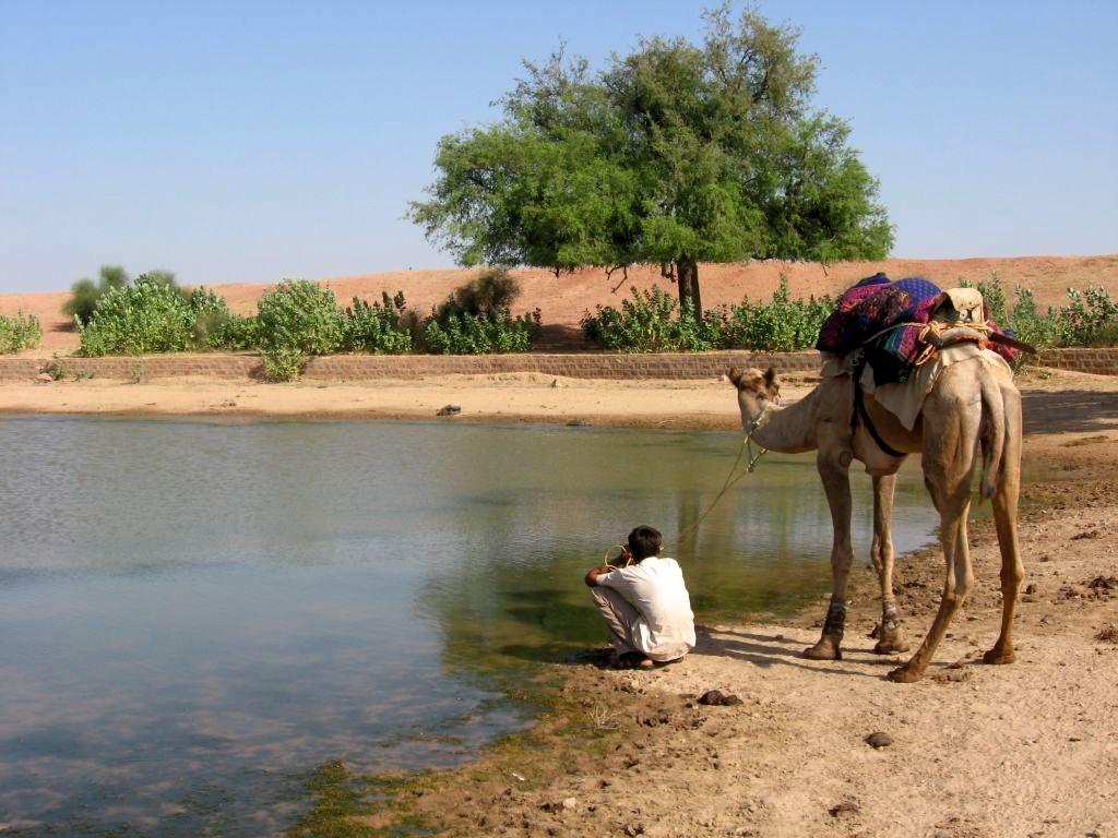 Thar desert 1 30