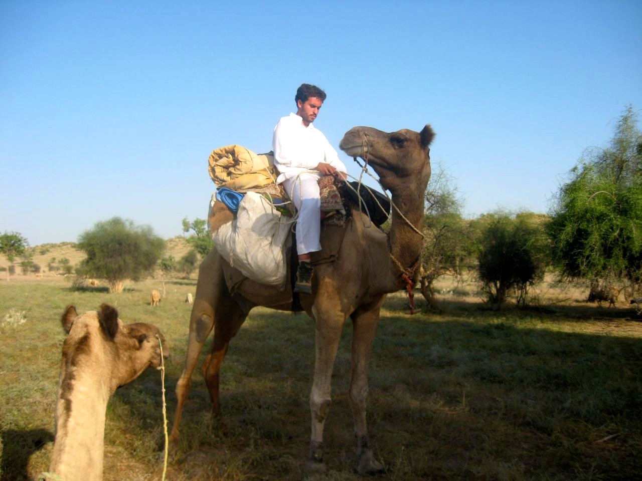 Thar desert 1 33