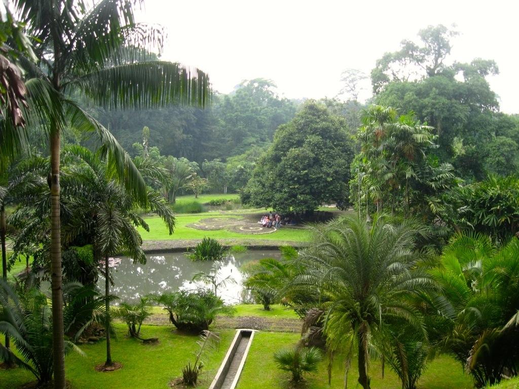 Bogor 2 01b