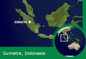 gallery sumatra map