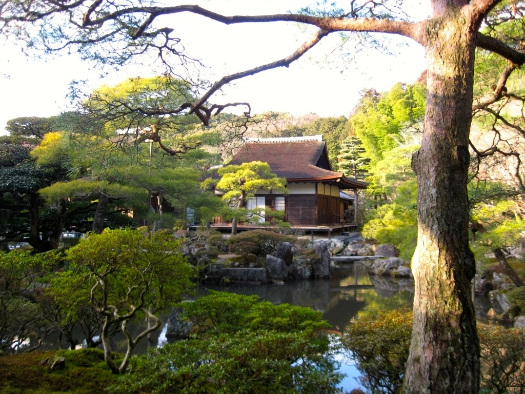 Kyoto 4-24