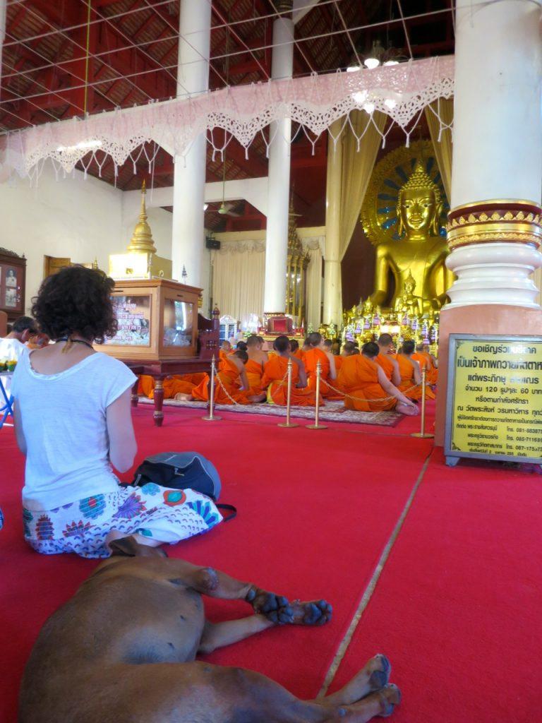 Chiang Mai 1-26