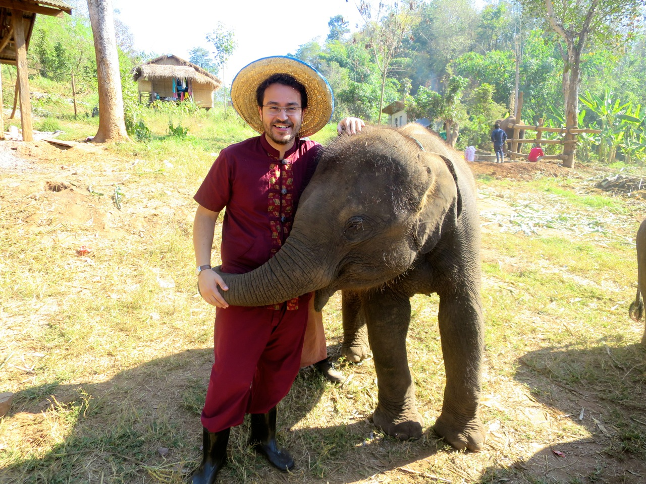 Elephant 1 01