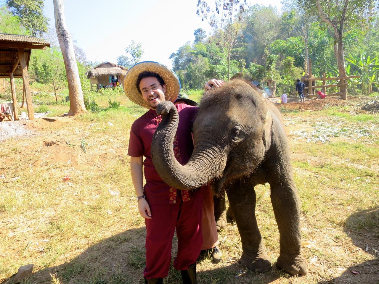 Elephant 1-03