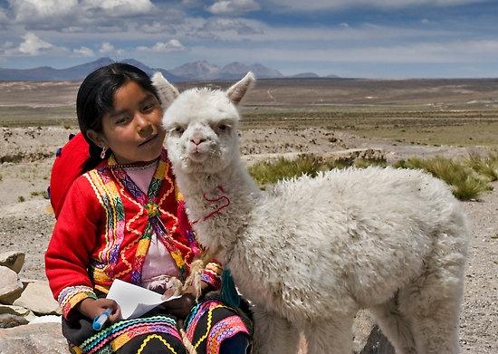 Incas 1-02