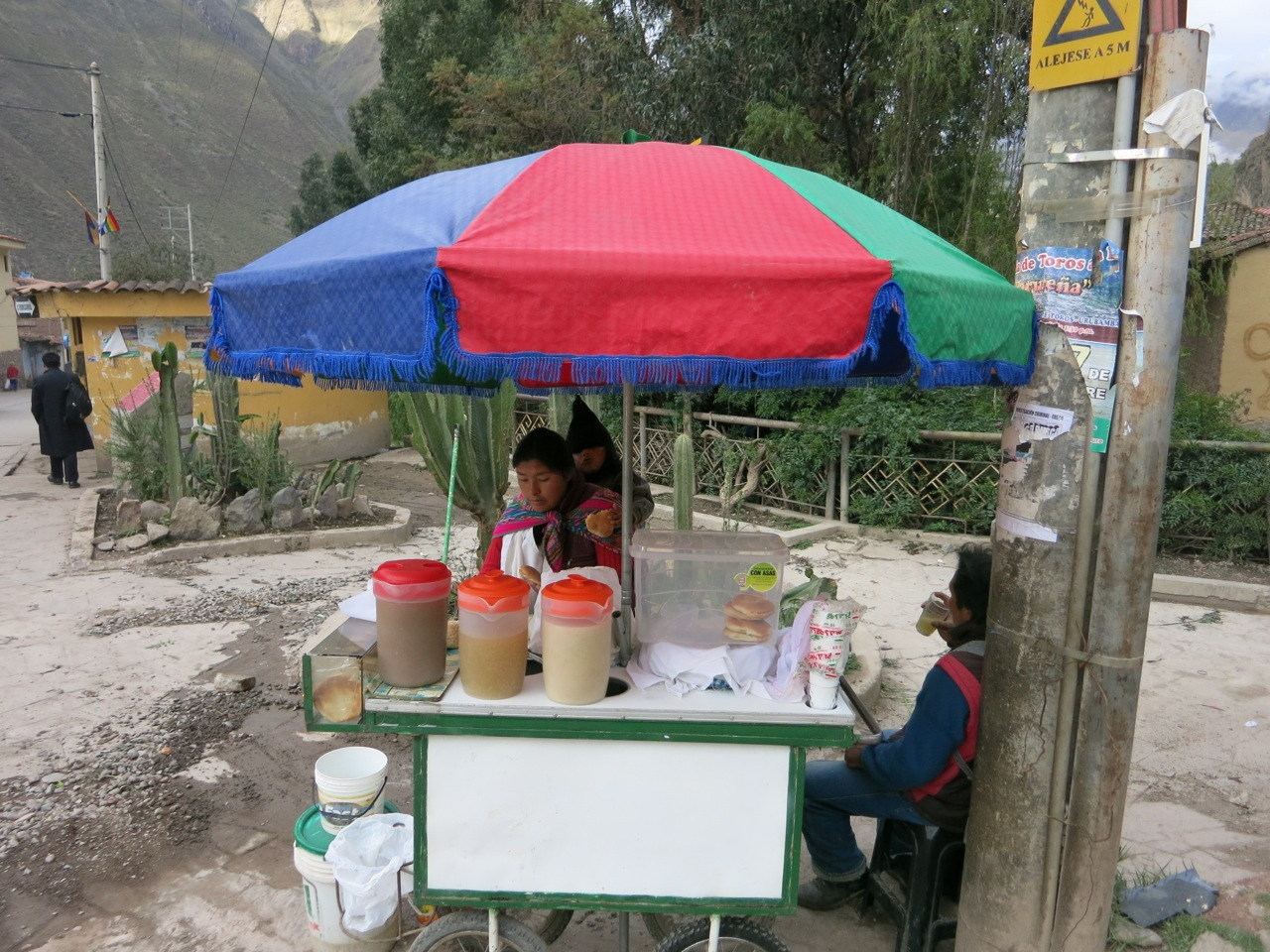 Machu Picchu 1-05b