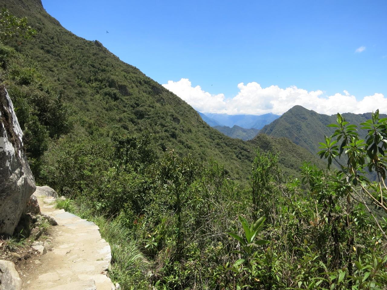 Machu Picchu 1-19
