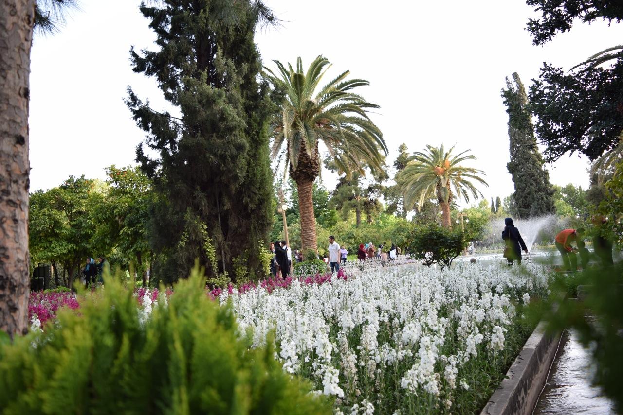 Shiraz 1-28