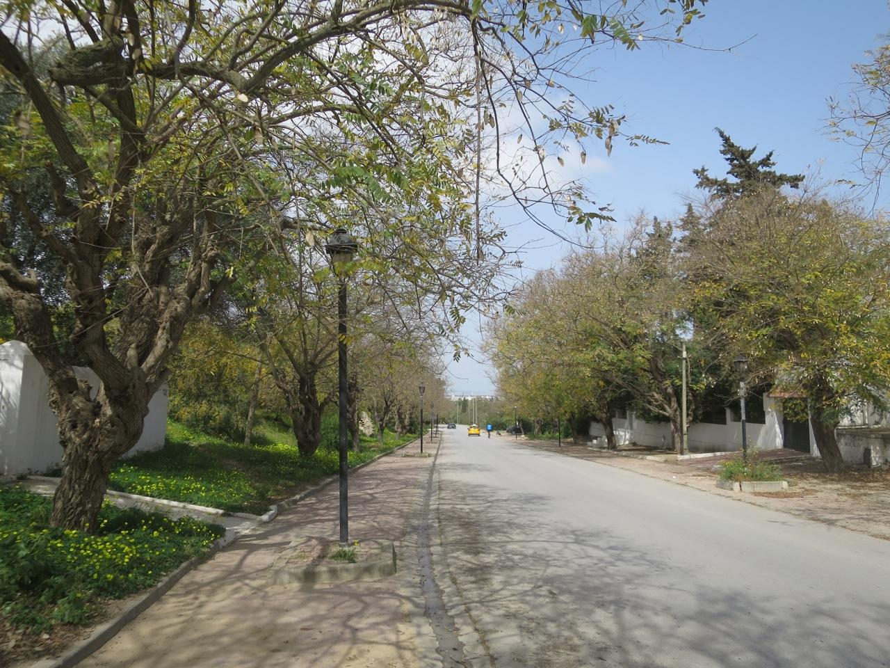 Cartago 1-05