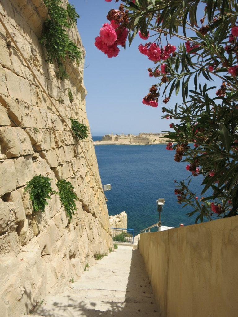 Malta 2-19