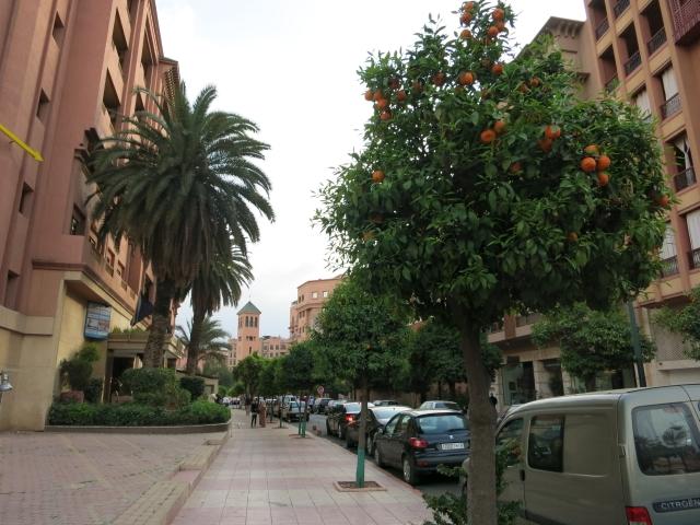 Marrakech 3 02