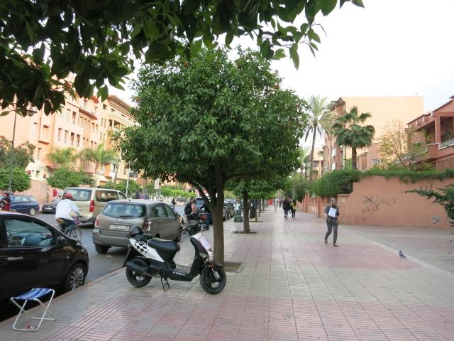 Marrakech 3-09