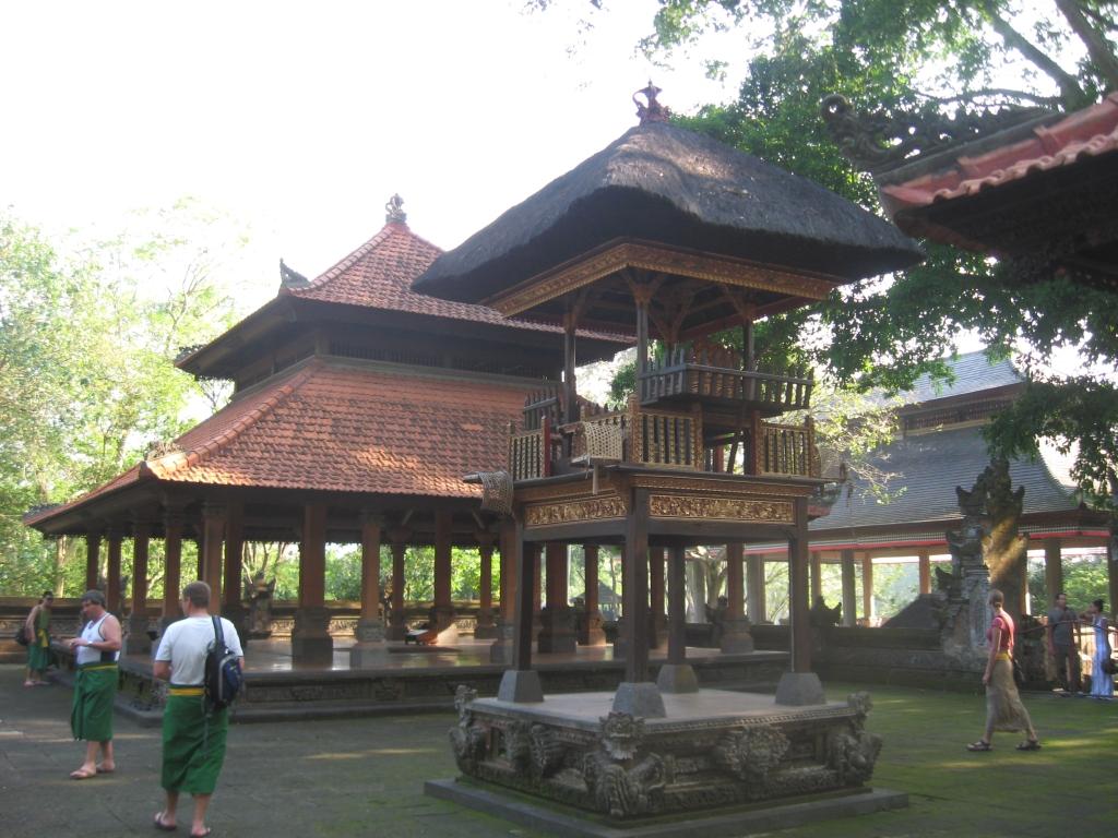 Monkey forest 13