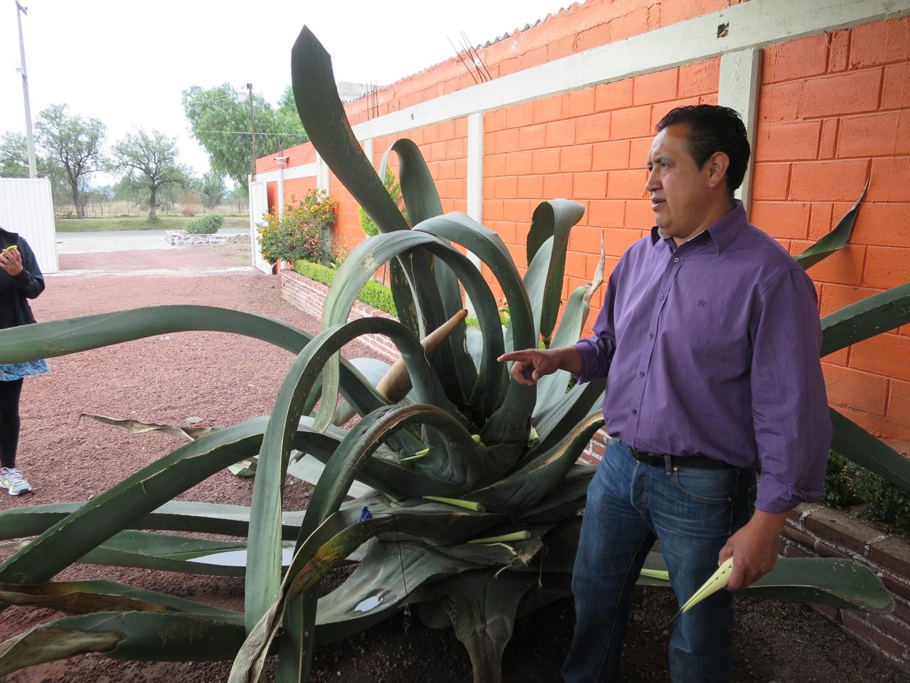 Teotihuacan 1-05