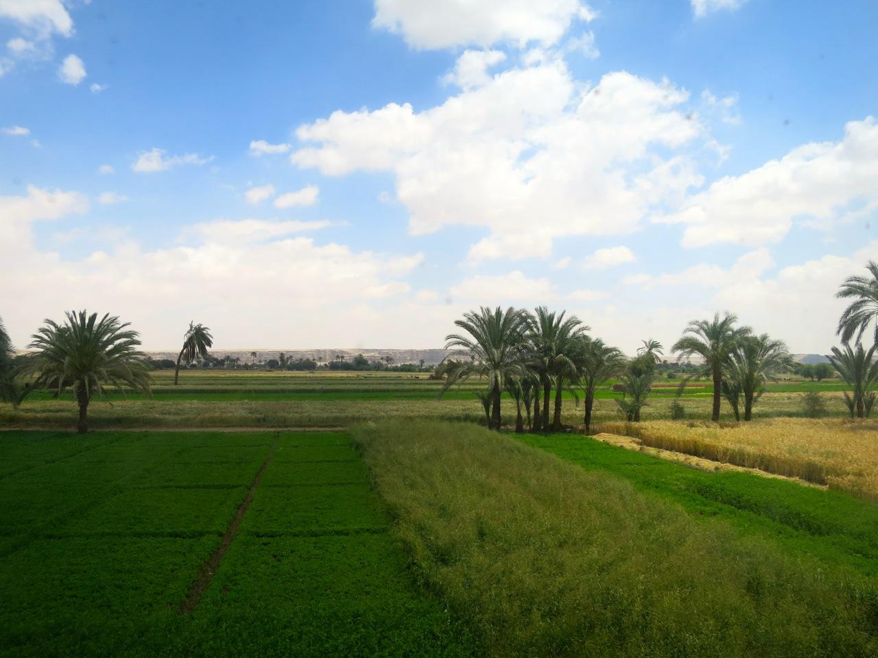 Trem no Egito 1-13