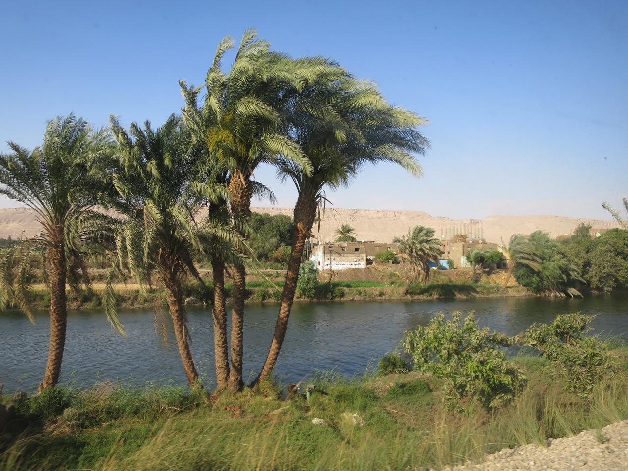 Trem no Egito 1-20