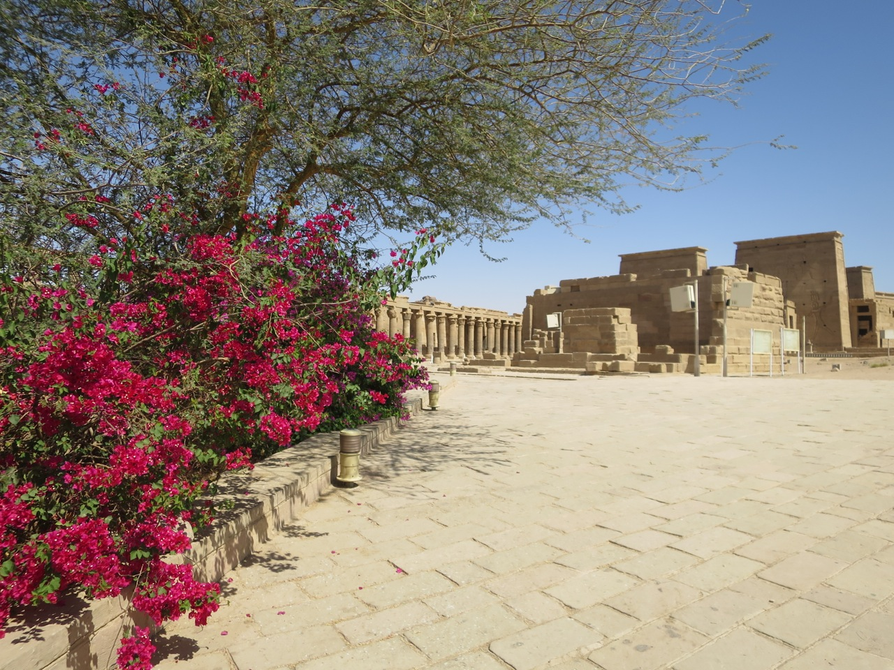 Aswan 1-11