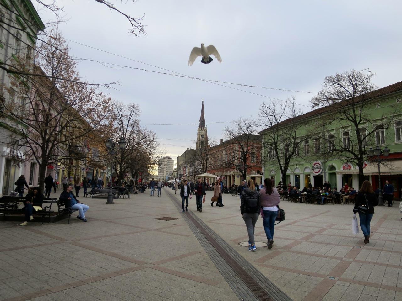 Novi Sad 1-25