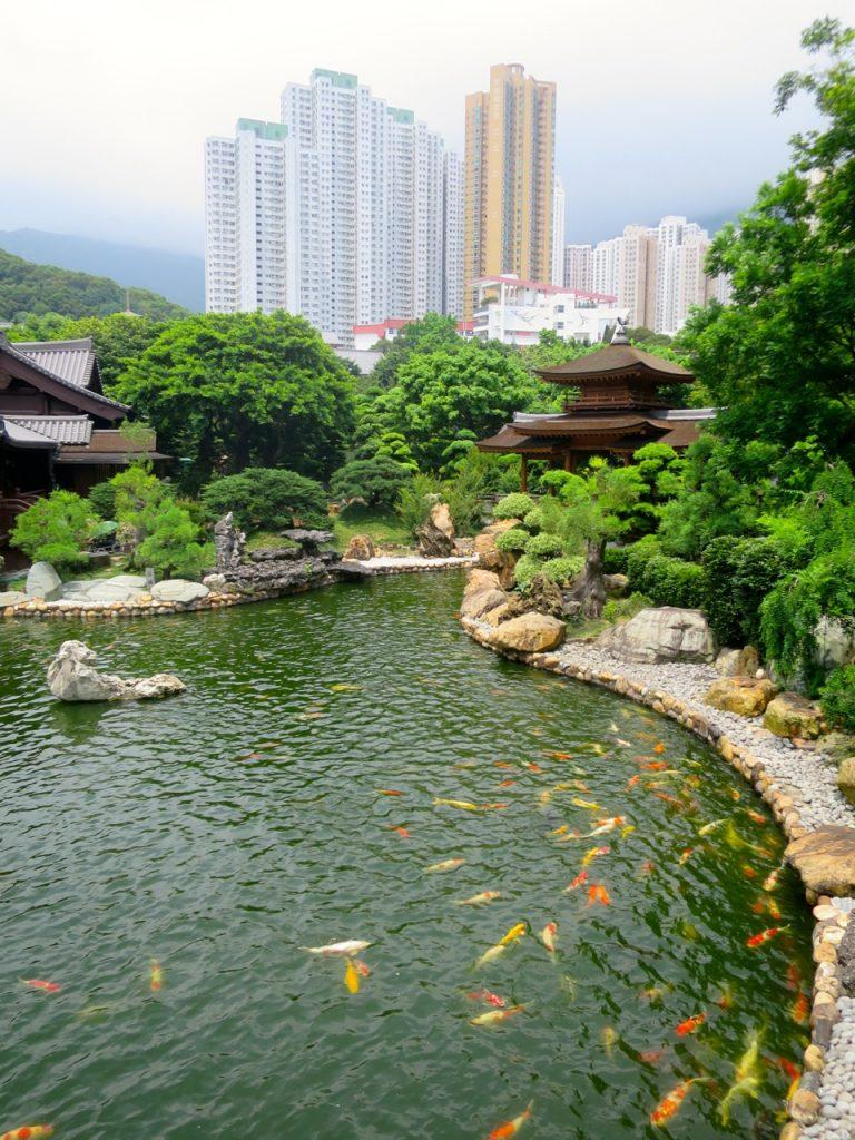 Hong Kong 1-15