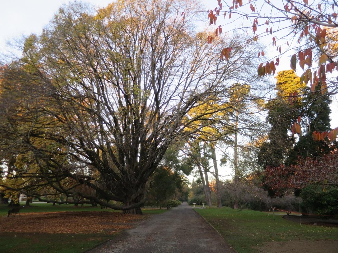 Christchurch 1 08