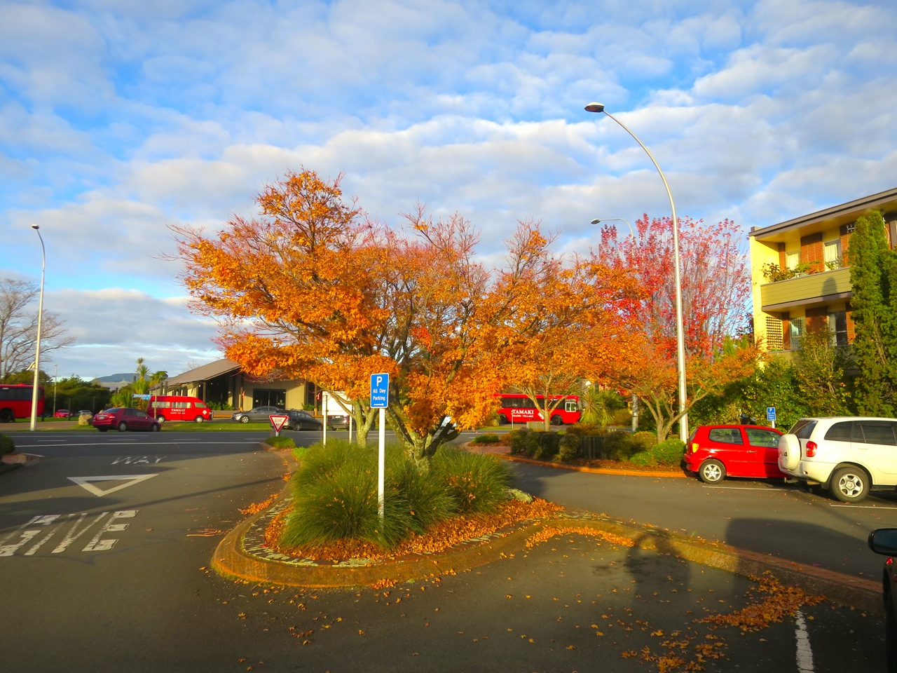 Rotorua 1 03