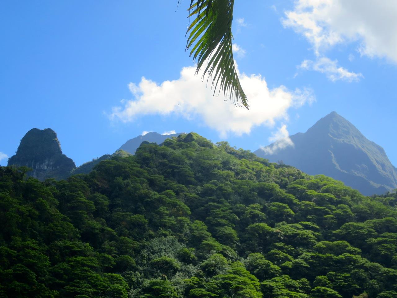 Taiti 3 01b