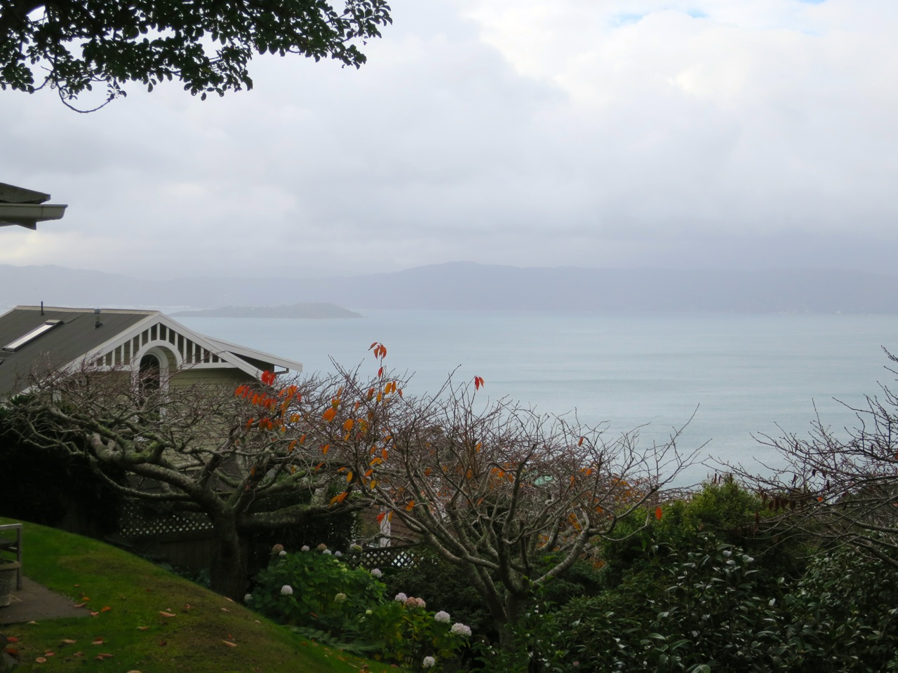 Wellington 1 09