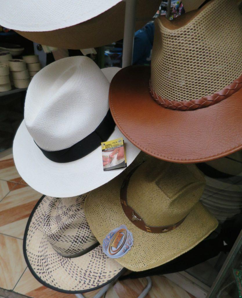 Chapeu panamá