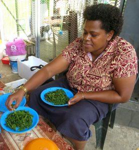 Fiji 1 02