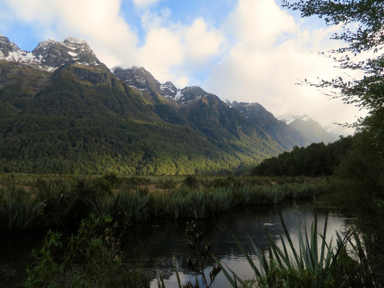 Milford Sound 1 05
