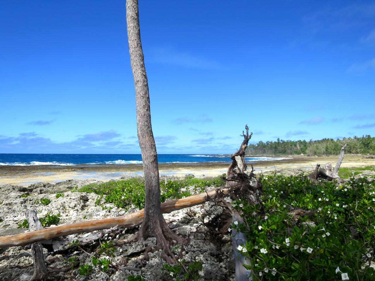 Port Vila 3 05