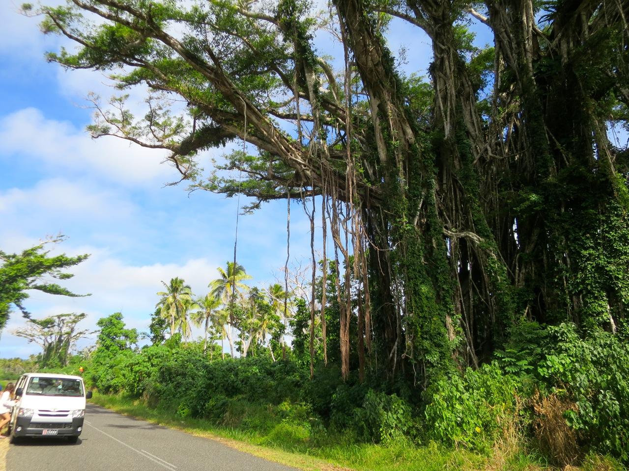 Port Vila 3 13