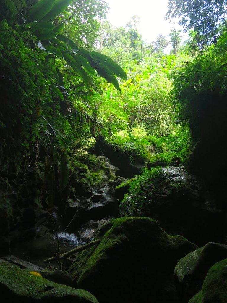 Millennium Cave 1 13