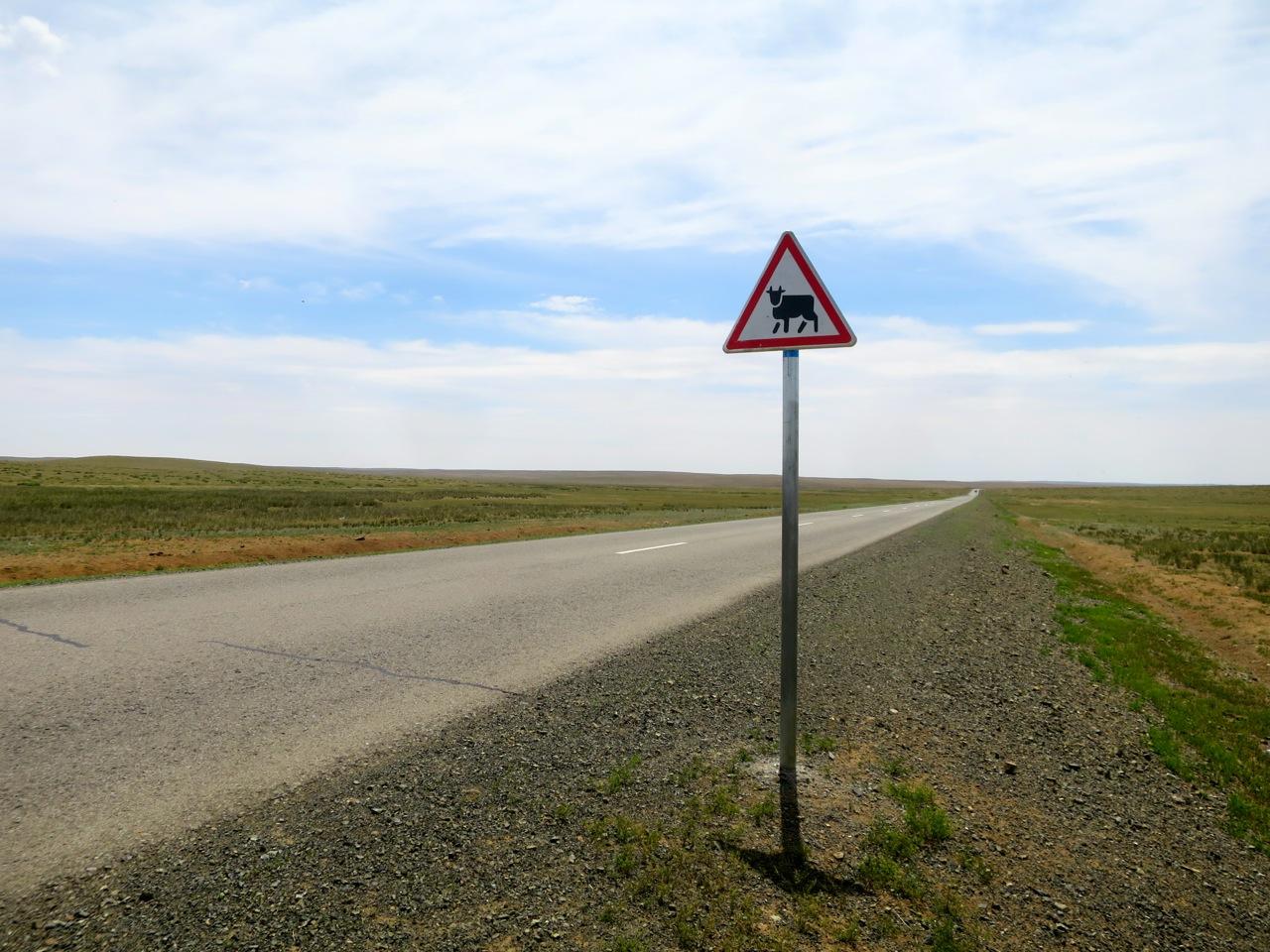 Tour Mongolia 1 04