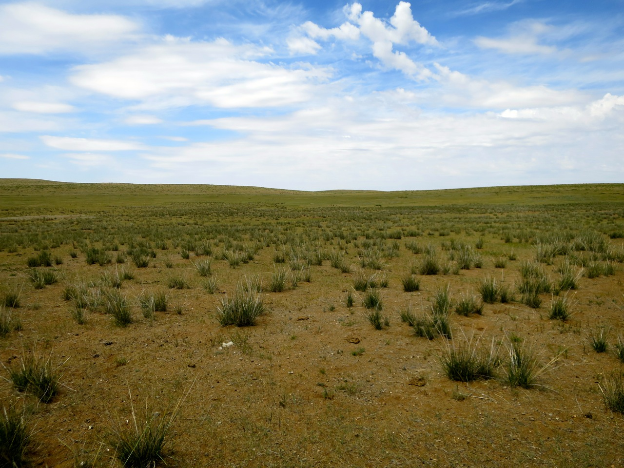 Tour Mongolia 1 05
