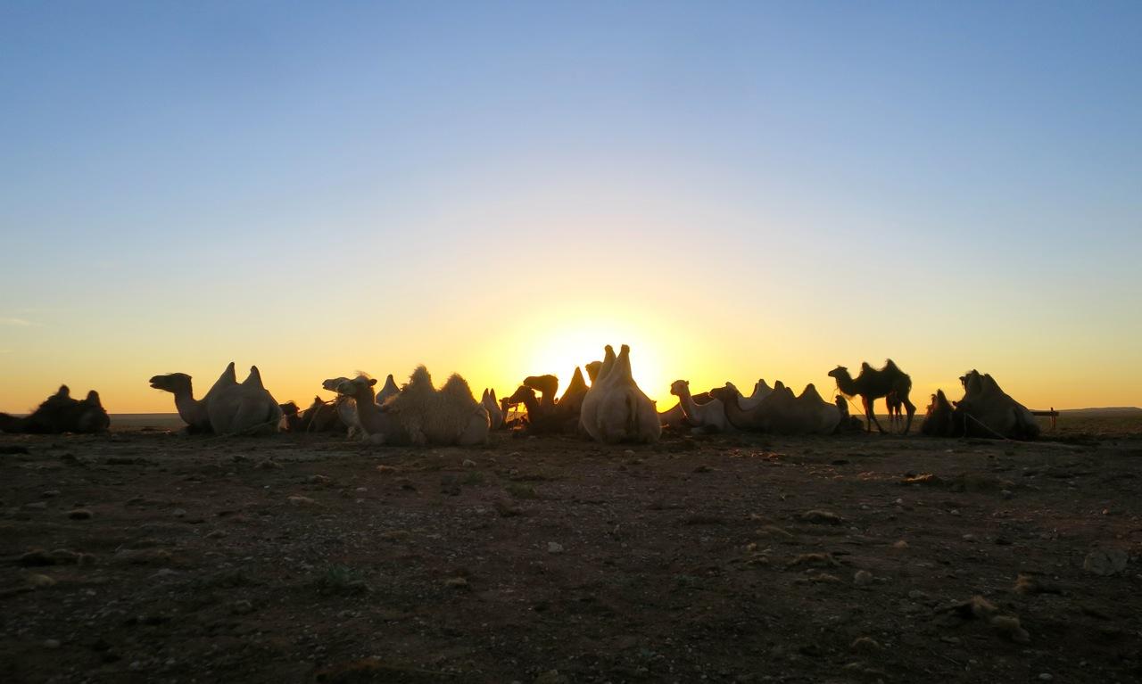 Tour Mongolia 1 36