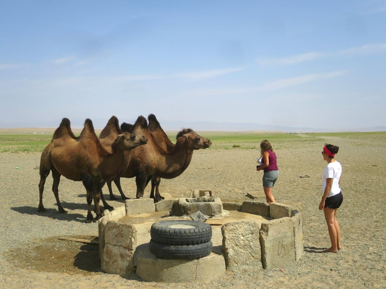 Tour Mongolia 2 21