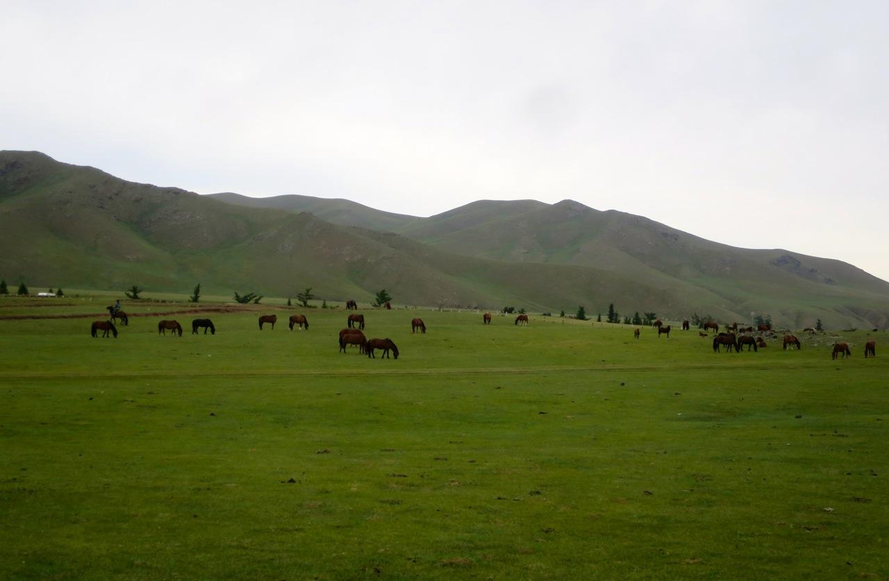 Tour Mongolia 3 23
