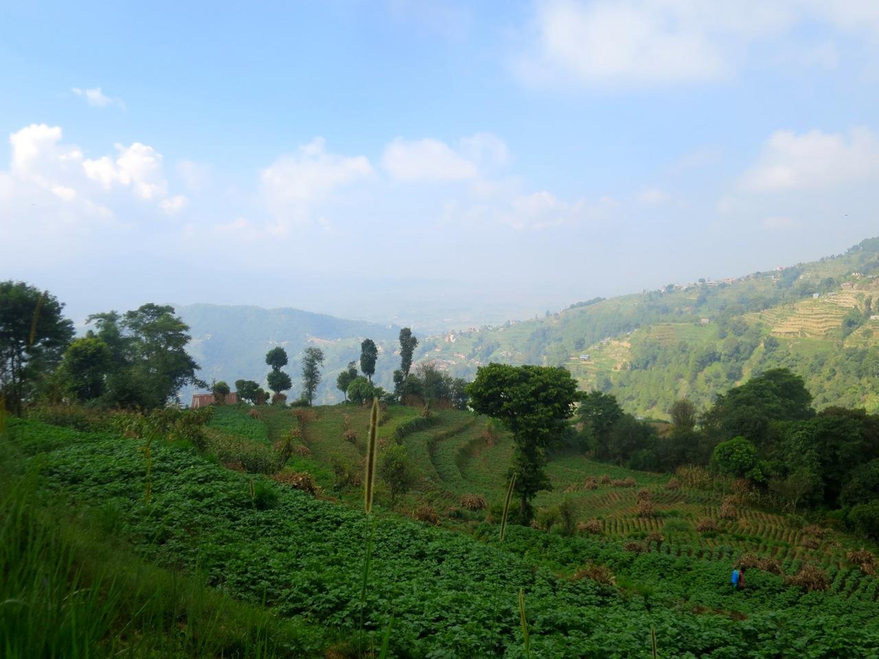 Katmandu 4 06