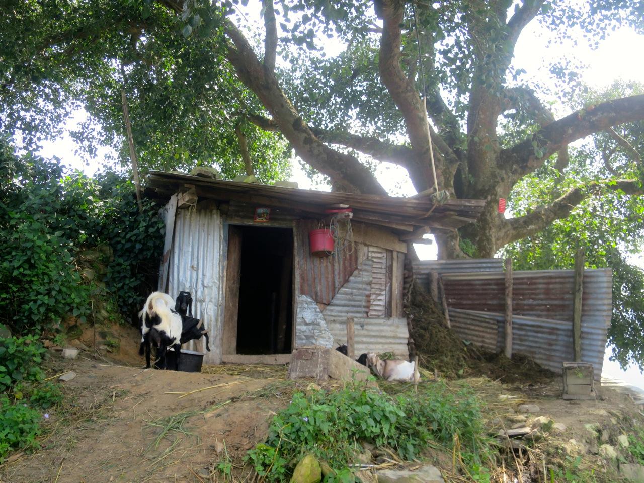 Katmandu 4 10