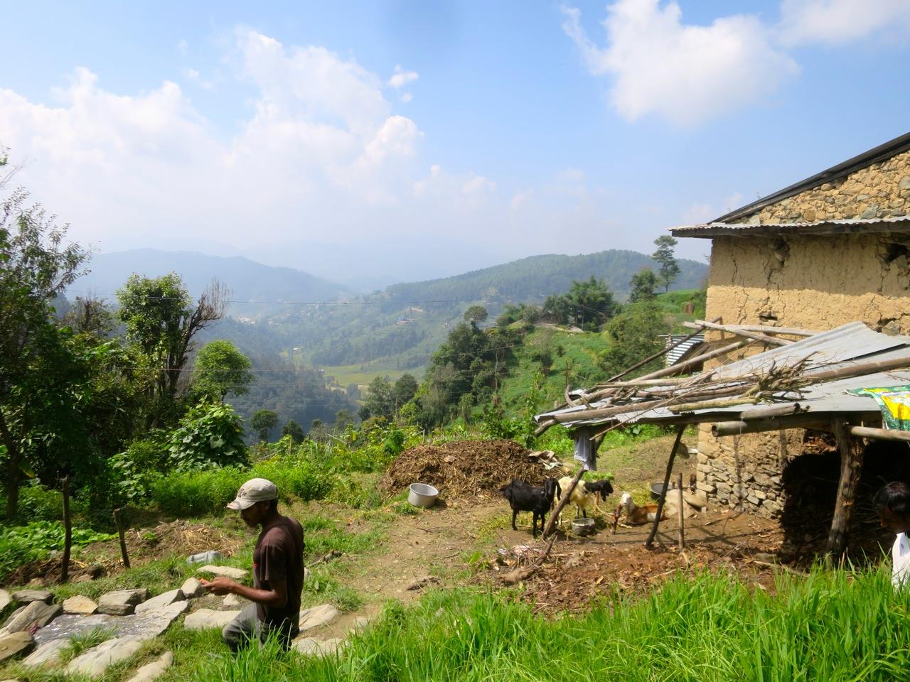 Katmandu 4 11