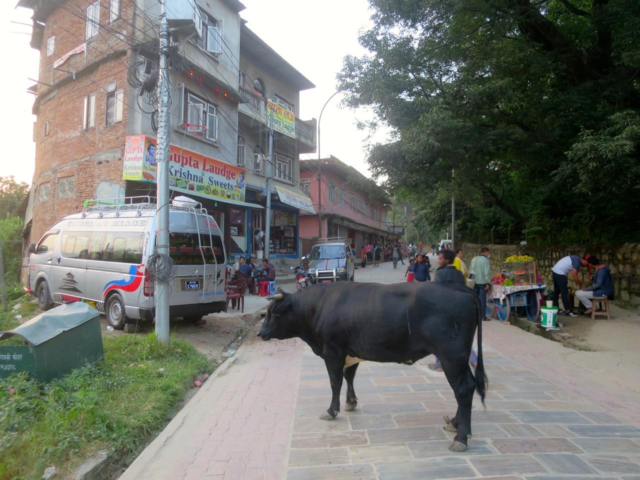 Katmandu 6 08