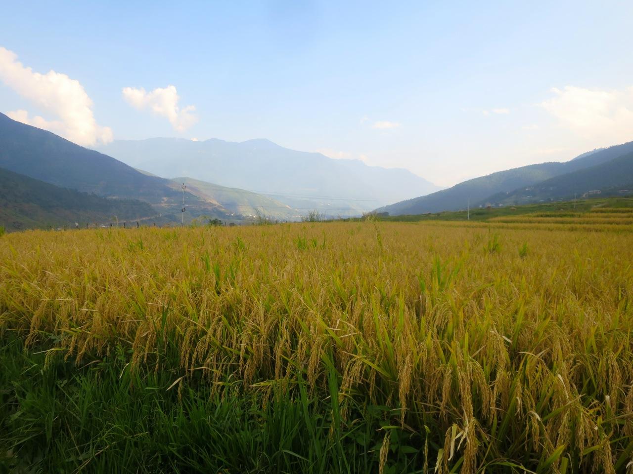 Bhutan 1 37