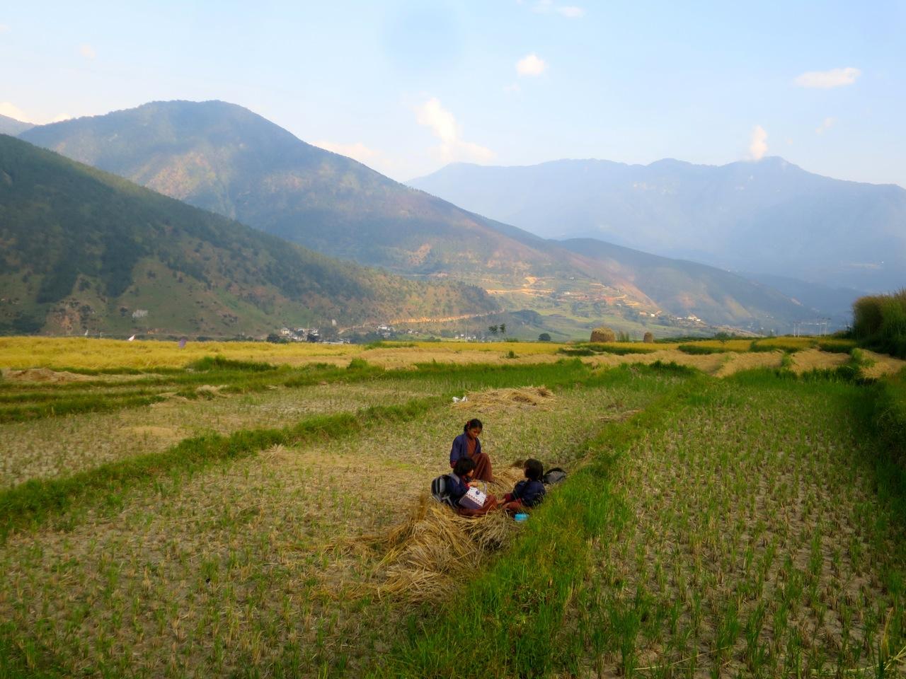 Bhutan 1 41