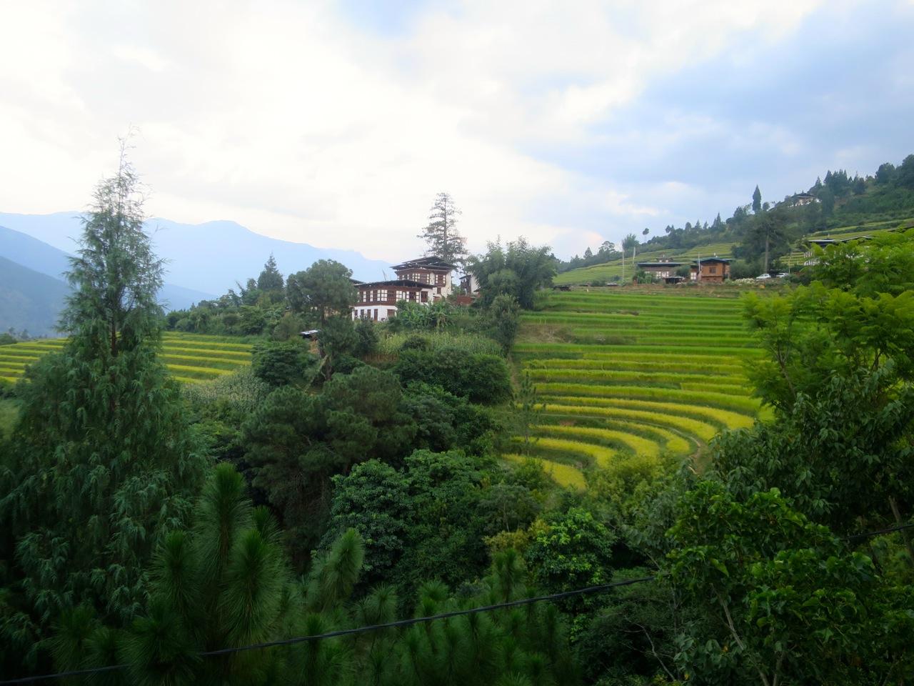 Bhutan 1 42
