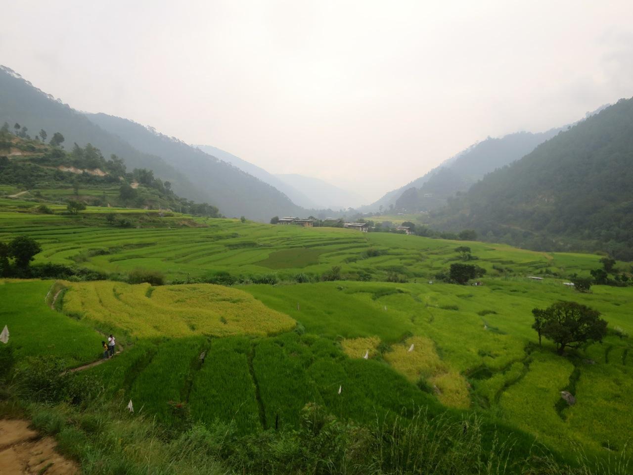 Bhutan 2 05